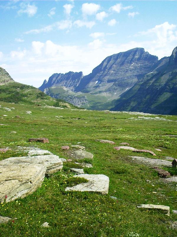 Glacier Park Garden Walls And Parks On Pinterest